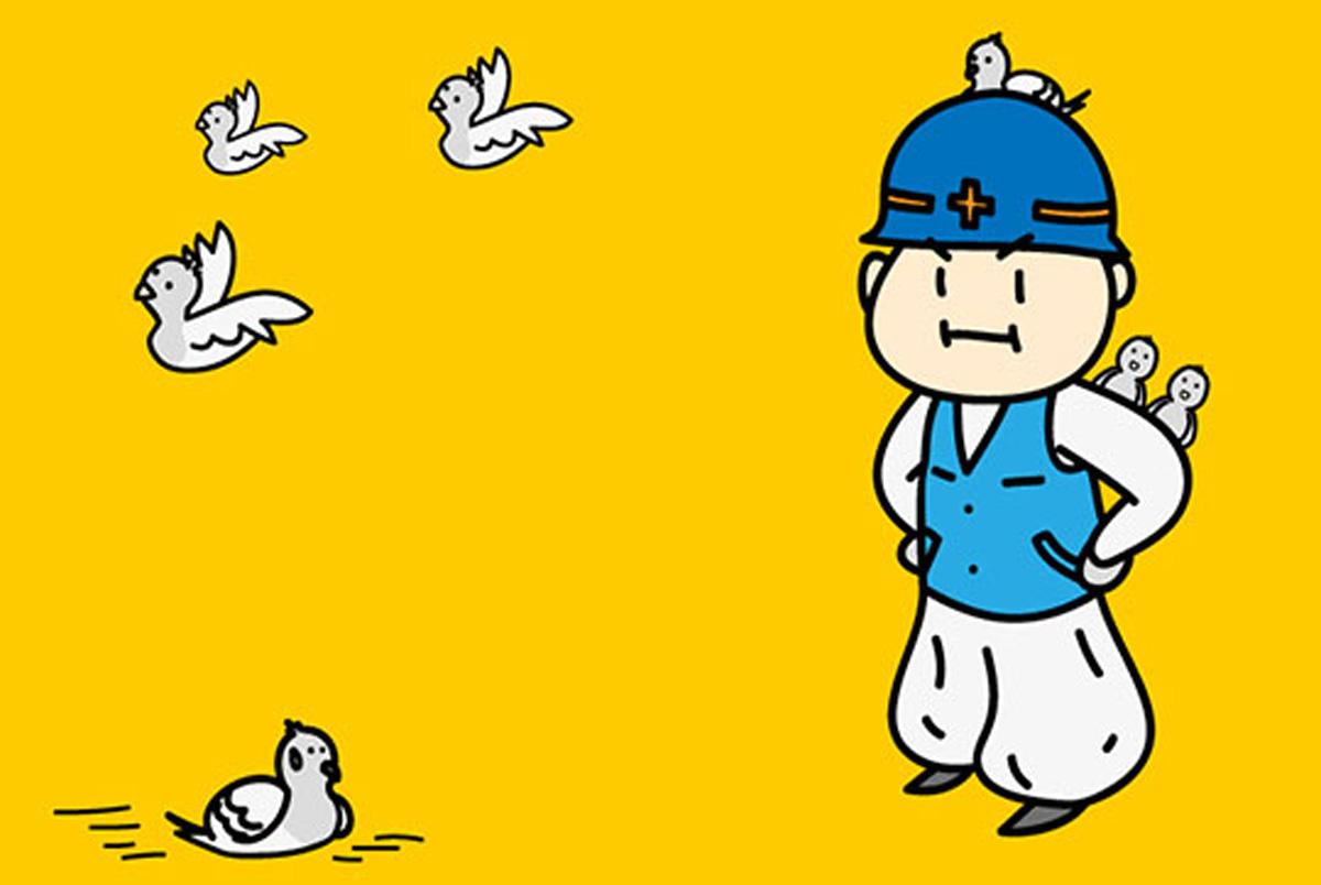 鳩の被害・トラブル対策