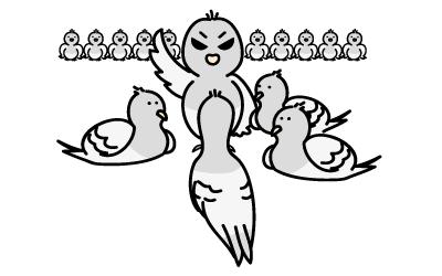 恐ろしい鳩被害 鳩は鳩を呼ぶ!!