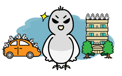 恐ろしい鳩被害 金銭的な被害も!