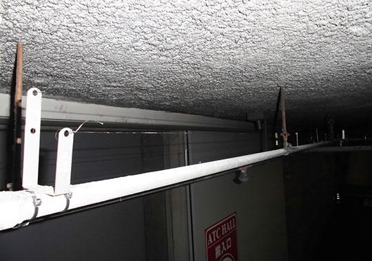天井配管パイプ部分に防鳥ワイヤー設置