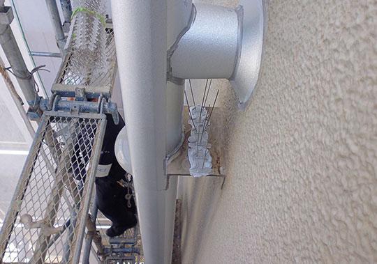 ビルの側面配管にステンレス剣山を設置